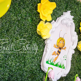 twins birthday party,themed parties, maya the bee, yellow and white, ladybug, thepolkadot company, umhlanga photographer, Sweetcr8ivity, soft play, izinga