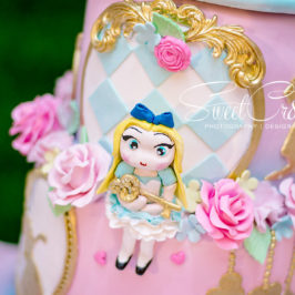 1st birthday party, alice in wonderland, themed, claires magical parties, sweetcr8ivity, elaine and aveen lutchman, the winchester function venue