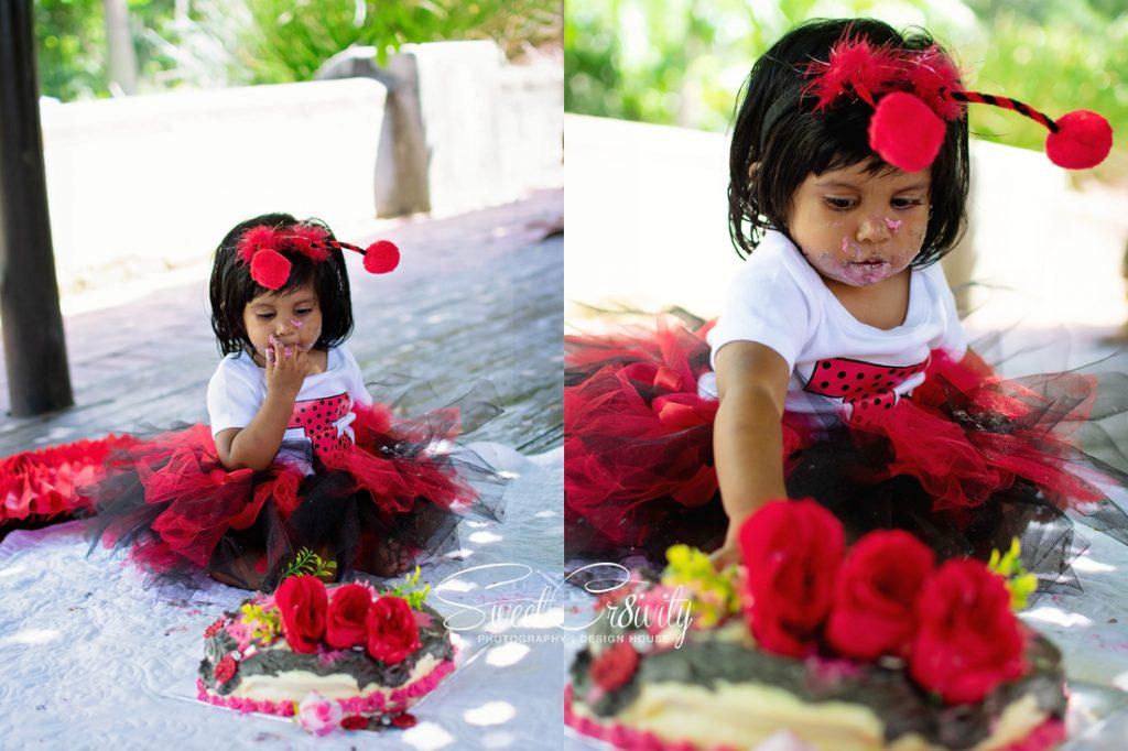 cakesmash, ladybug themed party, sweetcr8ivity, durban photographers, durban botanical gardens, tutus and bows, jayshree Appalsamy